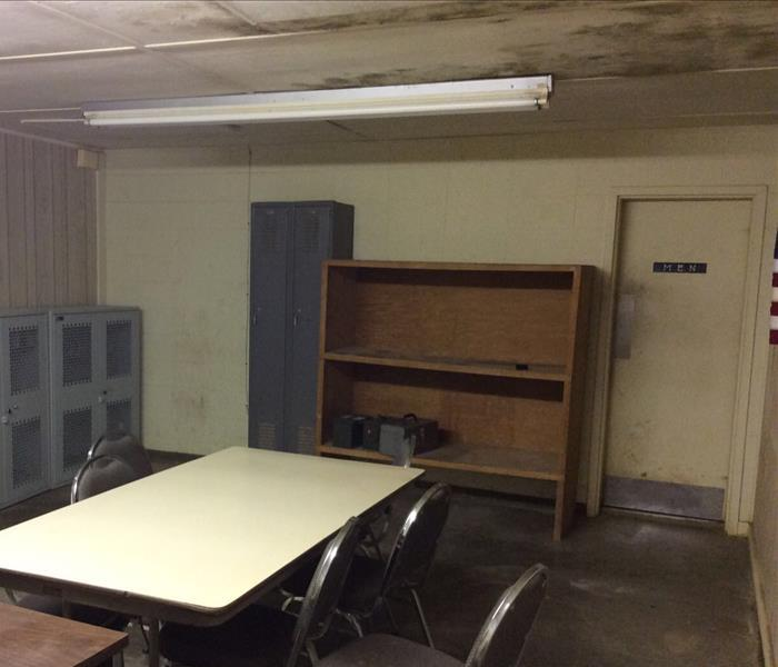 Commercial Mold Job in Olive Branch, MS