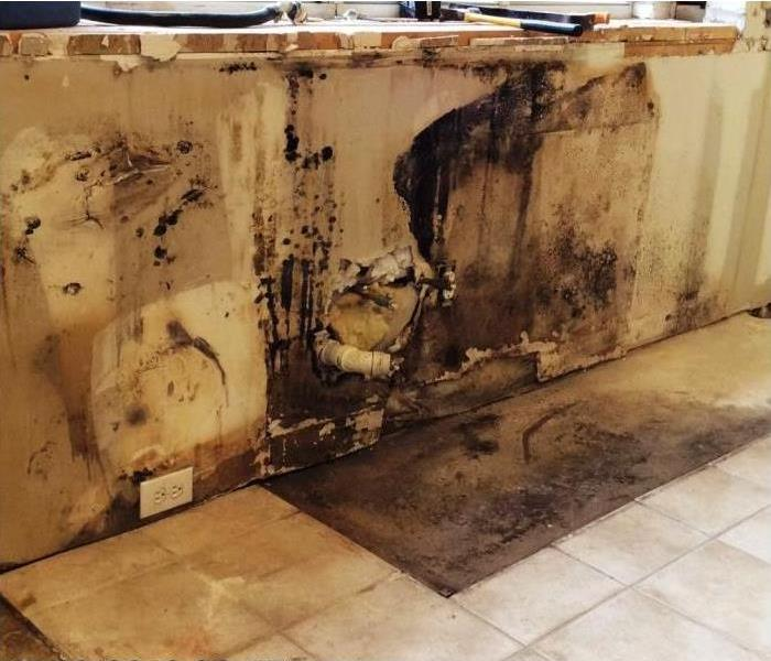 Water Damage Turns Into Mold Job
