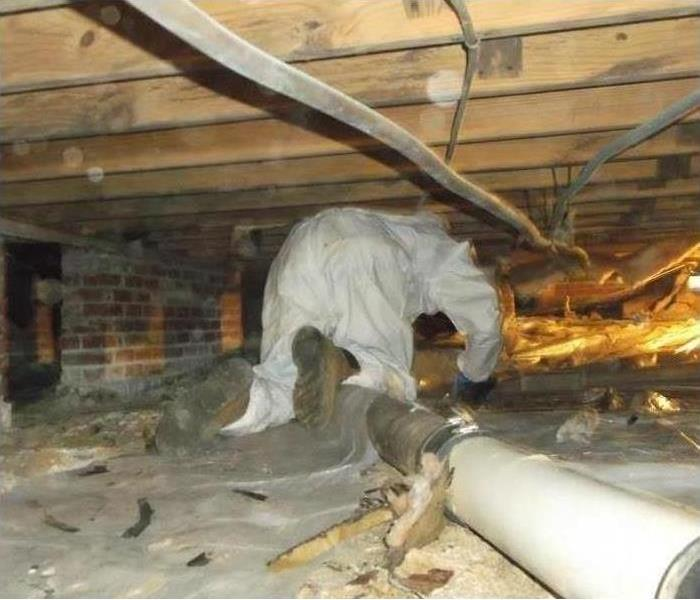 Crawlspace Remediation