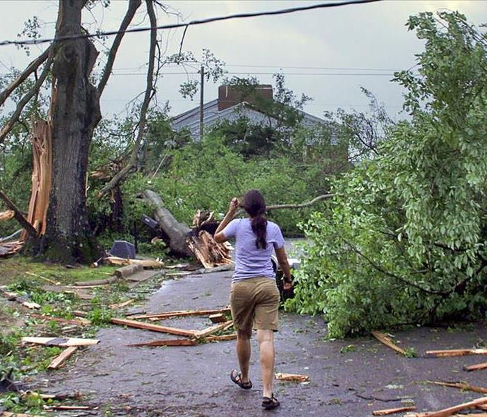 Storm Damage Disaster Preparedness - What You Can Do