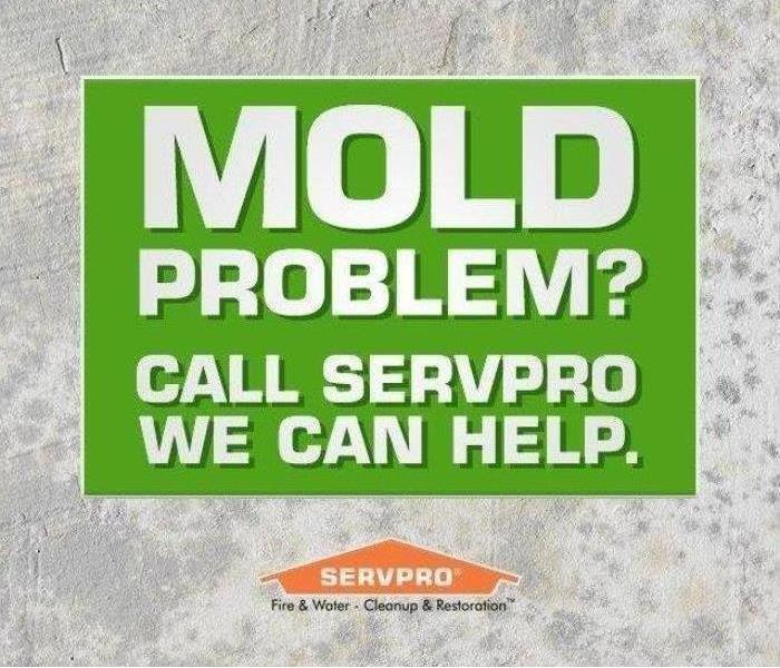 Mold Remediation Got Mold? Call SERVPRO of Desoto, Tate & Tunica Counties