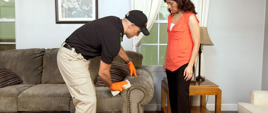 Southaven, MS carpet upholstery cleaning