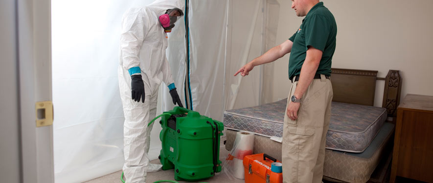 Southaven, MS mold removal process